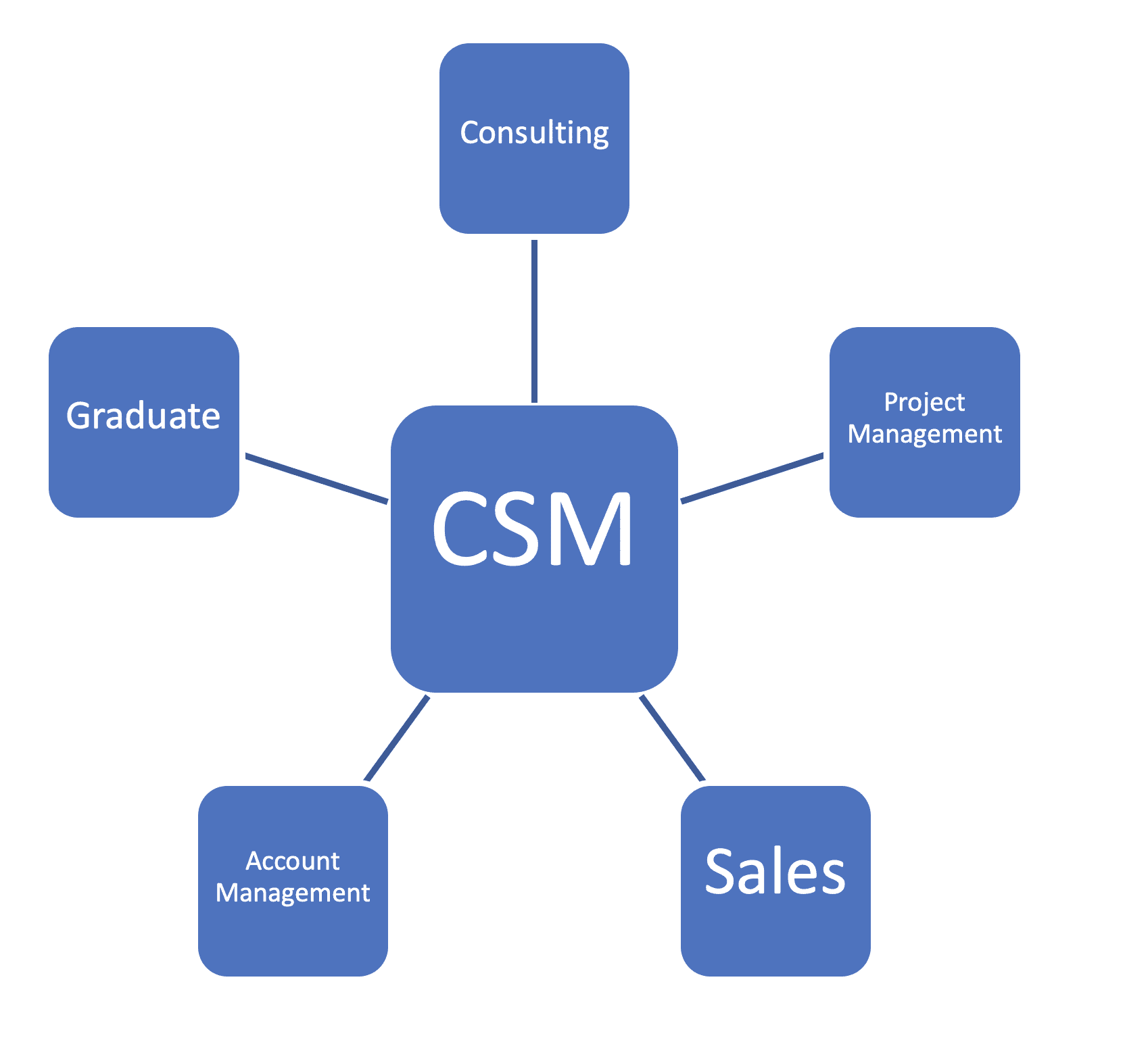 Roles of a Customer Success Manager